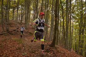 corsa nel bosco