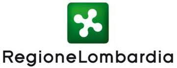 Regione Lombardia: progetti esteri finanziati